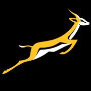 Springboks v British & Irish Lions - 3rd Test