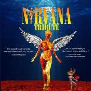 Nirvana Tribute Live 2020