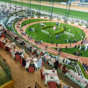 Racing at Meydan Thu 9 January 2020