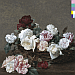 Tim's Twitter Listening Party: New Order Power Corruption & Lie