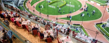 Racing at Meydan Thu 21 November 2019
