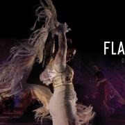 Dubai Opera: Flamenco Passion