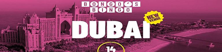 Bongo's Bingo Christmas 2019