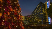 Nomad at Jumeirah Creekside Hotel: The Irish Village Christmas Tree Lighting 2020