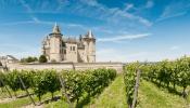 Wine Tasting Masterclass Series: Bordeaux