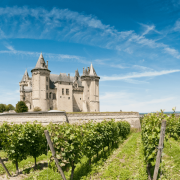 Wine Tasting Masterclass Series: Bordeaux