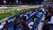 Racing at Meydan Thu 19 December 2019