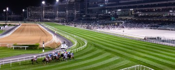 Racing at Meydan Thu 24 October 2019