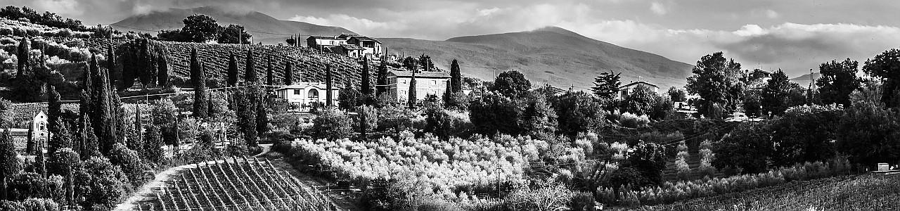 Certo A Taste of Tuscany 2020