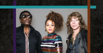 The Irish Village presents The Brand New Heavies Live